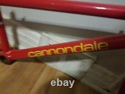 Old School Bmx 1995 Cannondale 24 Cruiser Frame Fork Headset Vintage Rare Htf