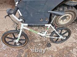 Raleigh Carbo Spec Mag Burner. Old School! Simplex Mag wheels