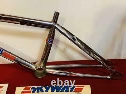 SKYWAY TA 1980s OLD SCHOOL BMX 20 Inch Frame Vintage Rare