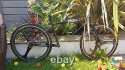 Slingshot Retro ultra rare mtb frame bmx old school farmboy dog bone fiberglass