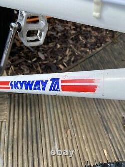 Old School Bmx Skyway Ta 1985, Dx, Tuff Neck Full Bike Peinture Originale