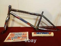 Skyway Ta Années 1980 Old School Bmx 20 Inch Frame Vintage Rare